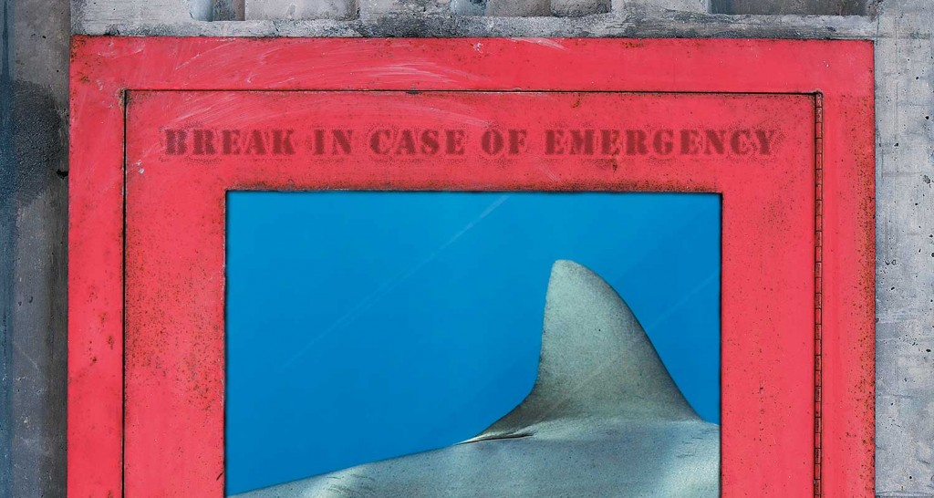 creative concept illustrating the endangerment of sharks