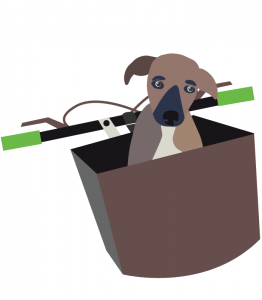 Illustrated puppy in bicycle basket
