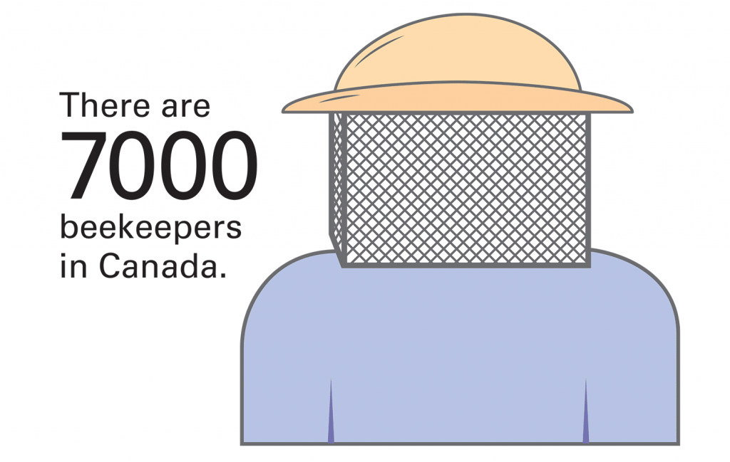 Beekeeper Illustration